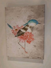 white and brown bird painting