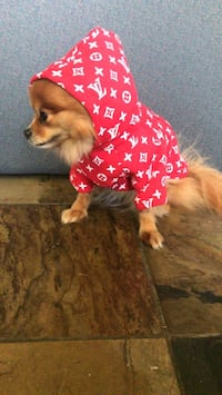 Brand new sweater for dogs  Abbotsford, V2S 1K2