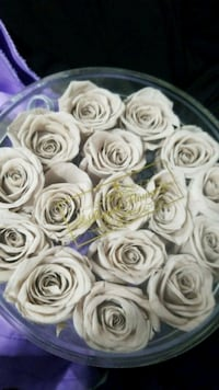 A box of long lasting real roses.   Brampton, L6Z 0B4