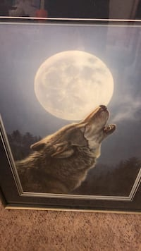 brown and white wolf painting Surrey, V3T 1L4