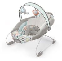 Baby bouncer/ bounce chair Tampa, 33615