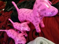 Pink victoria secret dogs Antelope, 95843