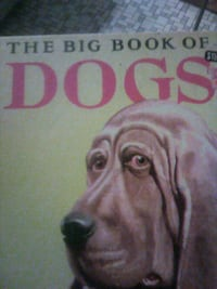 two books on dogs