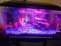 10 gallon fish aquarium with accessories  San Francisco, 94112