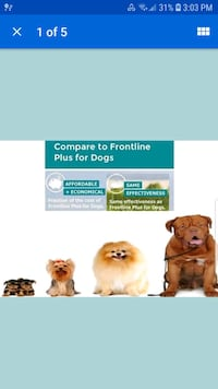 JT'S Flea and Tick Prevention Plus for Dogs  Fresno, 93705