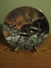 Our Woodland Friends - Raccoons Lacey, 98503