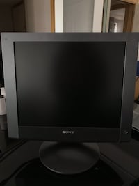 SONY Computer Display