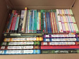 Boxes of Children's Chapter Books