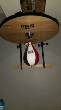 Everlast / Rinside Speed Bag Setup Oshawa, L1J 7R6