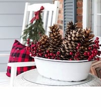 JUMBO Extra Large Pine Cones range from 9-11 inches ????   $6.00 each Whitby, L1P 1M9