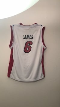 Retro Miami Heat lebron Jersey