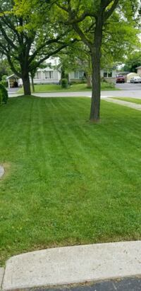 BASIC LAWN CARE SERVICES. Toronto, M6A 1X6