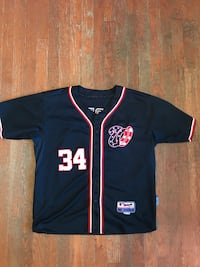Bryce Harper Washington Nationals Jersey Washington, 20024