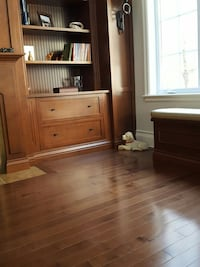 white short coat puppy; brown wood base bookcase and bench Blainville, J7B 0A1