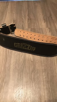 Grizzly weight belt Guelph, N1E 6H2