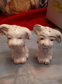 White dog salt and pepper