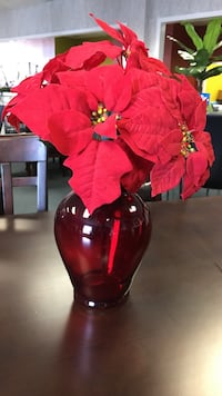 red glass flower vase with red Poinsettia flowers Dallas, 75237