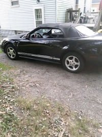 Ford - Mustang - 2001 Youngstown