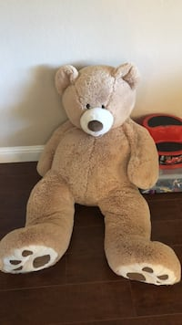 Plush Teddy Antioch, 94509