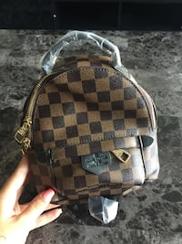 NEW Louis Vuitton Palm Springs backpack Mississauga, L5B 1T8