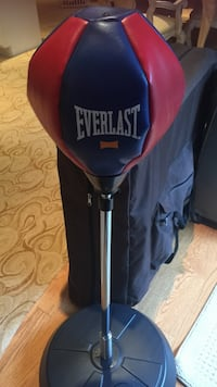 blue and red Everlast standing speed bag