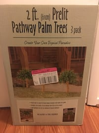 Unopened Prelit Pathway Palm Trees Annandale, 22003