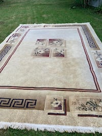 Beautiful new area rug Surrey