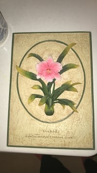 pink Orchid wall decor