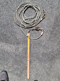 20 ft. Dog Tie-Out Cable & Stake Baltimore, 21221