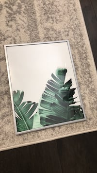 11x14 leaf print and silver frame