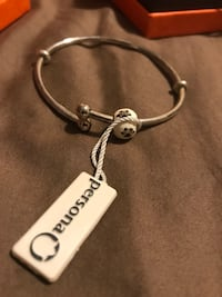 Persona Flexi Bangle bracelet and Perfect Paws charm Vancouver, V5R 3P6