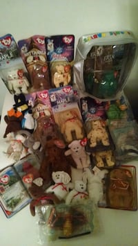 Ty Beanie Babies and Case Charlotte, 28269