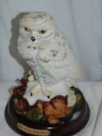 Snowy owl by the Crosa Collection  Edmonton
