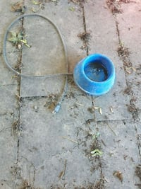 Outdoor water bowl (for dog or chickens ???? ?????
