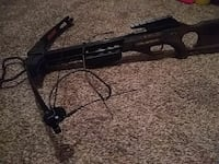black compound crossbow Clare, 48617