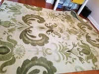 Beige and green  area rug New Orleans