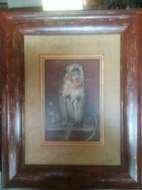 Monkey picture Archdale, 27263