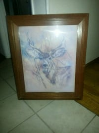 Old picture deer in the woods Fresno, 93727