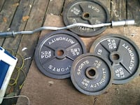 Weights and curl bar Theodore, 36582