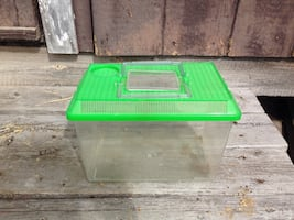 Green plastic pet carrier