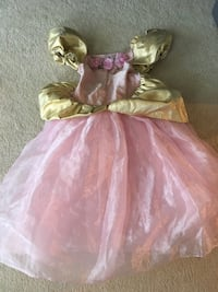 Pink and Gold Princess Dress Lovettsville, 20180