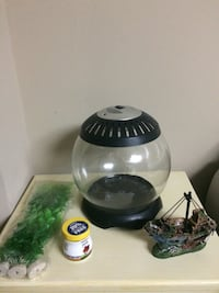 Beta Fish Tank, new accessories and food Rockville, 20852