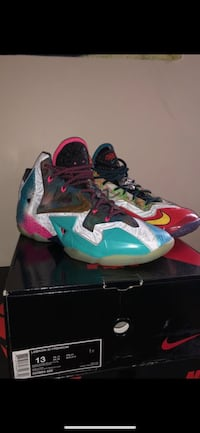 LeBron 11 (What The) Size 13 Westminster, 21158