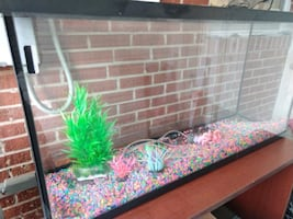Fish tank with supplies
