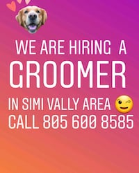 Hiring a pet groomer in simi valley  Simi Valley, 93063