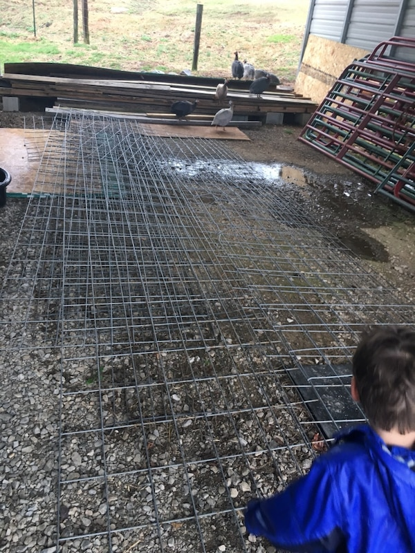 Used Cattle Panels For Sale In Clarksville Letgo