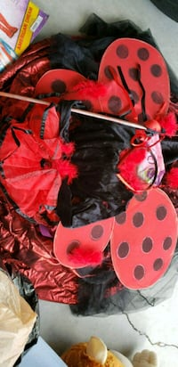 Lady bug costume Port St. Lucie, 34953