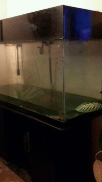 80 galFish tank with cabinet stand      2 pumps    Ajax, L1S 3A4