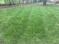 Lawn mowing Milwaukee