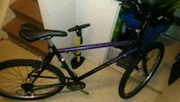 Concorde true grit ( Ritchey frame) mountain bike Toronto, M5A 4J4
